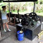 Und das ist die modernere Version der Zuckerrohrpresse, so vom Anfang des letzten Jahrhunderts.