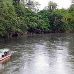Wenn ich den Namen dieses Flusses noch wüsste?? Ich weiss nur noch, das man hier diverse Bootstouren machen kann, u.a. bis nach Tortuga an der Karibik.