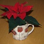 """""""Teekännchen"""" mit Weihnachtsstern"""