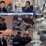 "Интервью  телеканалу ""ВЕСТИ"""