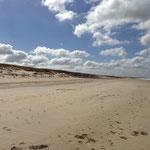 La plage de Julianadorp à la ligne de mire sud (à Callantsoog)