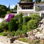 Auffahrt mit Treppe durch den Garten