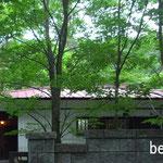 駒ヶ根山荘(駒ヶ根市)-外観(before)
