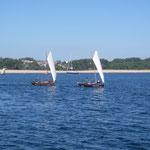 regatta 2