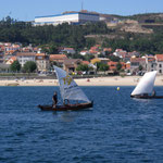 regatta 1