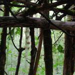 Waldlager