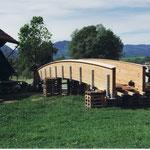 Auch Spanholzbrücke mit grosser Spannweite Dani Vogt D. Vogt Holzbau GmbH  Allmeindstrasse 27 8855 Wangen