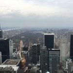 ニューヨークを一望できる人気のスポット「ロックフェラー・タワー」にも立ち寄り、NYの街を空から眺めます。 セントラルパーク方面です。