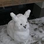 Schneehase von Fabian Dobretzberger
