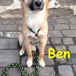 Ben aus Grünberg