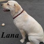 Lana aus Oschatz