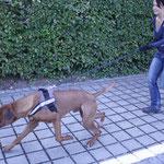Dayo und Chantal