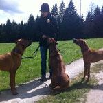 Dayo, Chantal, Rayha und Zina