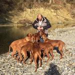 Martin mit allen Hunden