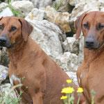 Rayha und Zina