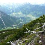 Aufstieg zum Schüsser mit Blick ins Wildental und auf Mittelberg