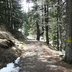 Weg zur Naturnser Alm