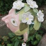 Blütenköpfchen oben
