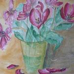 Tulpen G.Leichsenring