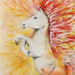 KH-P1-Pferd: Leidenschaft und Feuer!