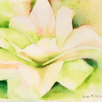KH-Z3-Zart: Wie die zarten Blumen willig sich entfalten und der Sonne stille halten. Lass mich so, still und froh deine Strahlen fassen und dich wirken lassen!