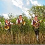 Tenorhorn/Bariton: Michael Settele, Tobias Mohr, Matthias Weber, Martin Kaufmann und Margit Berkmiller (v.l.n.r.)