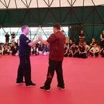 Budo Masters Rome Wing Chun Seminar
