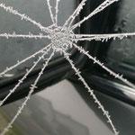 Spinnennetz am Autospiegel, 29.10.2012