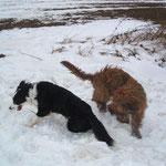Und außer Schnee liebe ich auch Lotta ;-)