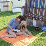 ein schattiges Plätzchen bei sommerlicher Hitze