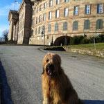 ich vor dem Schloss