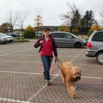 tags darauf: Ausflug in den Nationalpark Jasmund