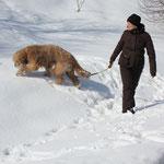 endlich: Schneefuttern zur Belohnung!