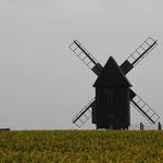 die Mühle von hinten