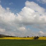 Ostersonntag in Thüringen; Morgengassirunde (am späten Sonntagmorgen ;-))