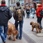 ...durch Flensburgs Fußgängerzone (Große Straße & Holm)