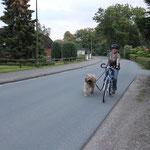 Rückkehr von der abendlichen Radtour kurz vor`m Dunkelwerden