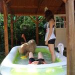 Juchuuu - Planschen im großen Pool