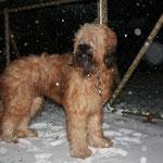 leise rieselt der Schnee... (besser spät als nie)