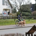 """""""ans Fahrrad"""" klappt auch super"""