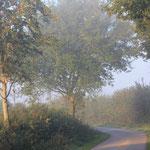 der Nebel verzieht sich nur langsam