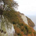 an der Steilküste mit Blick zum Königsstuhl