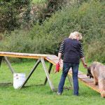 Frieda ist zum ersten Mal über den Steg gelaufen - trotz anfänglichem Zögern