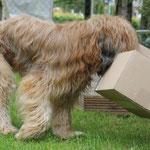 """""""Please, Mr. Postman..."""" Ich hätt` gern ein Päckchen (& keinen Brief)!"""