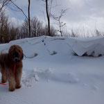 ...überall meterhoher Schnee