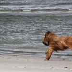 am nächsten Tag am Strand...