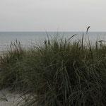 auf Wiedersehen Ostsee!!! bis zum nächsten Mal!