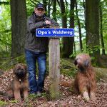 extra für Oppa Rainer!?