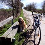 Zum Glück sind wir mit dem Fahrrad unterwegs