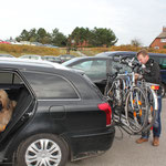 Herrchen tüdelt noch die Fahrräder fest, dann geht es in Richtung Fähre